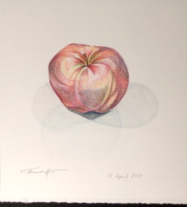 Apple Drawing 2010