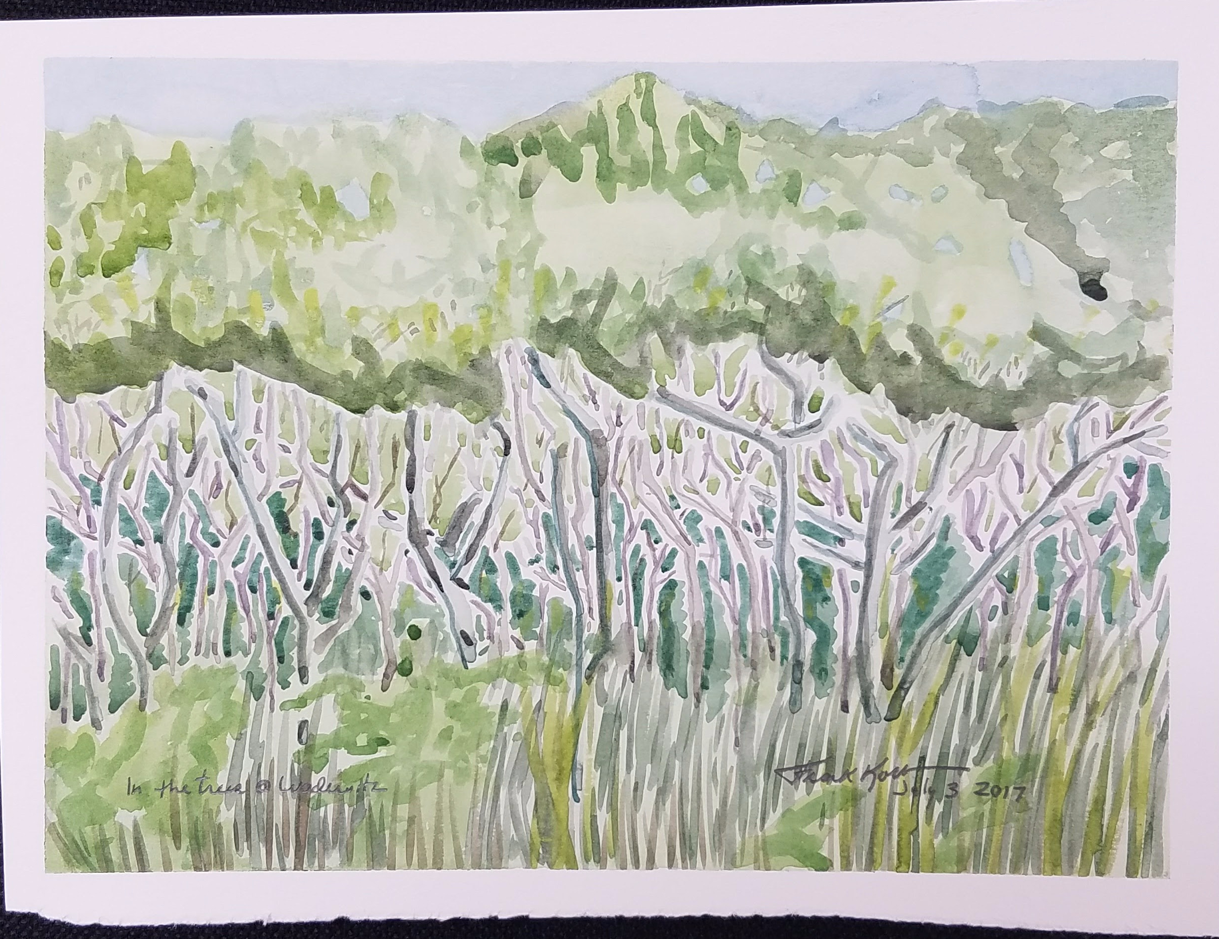"""In the Trees @ Wadewitz"", Frank Korb, Watercolor on Paper, July 3, 2017."